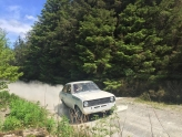 White ford escort MK2 rally car coming out of forest in wales with dust flying behind