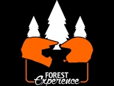 forest experience logo